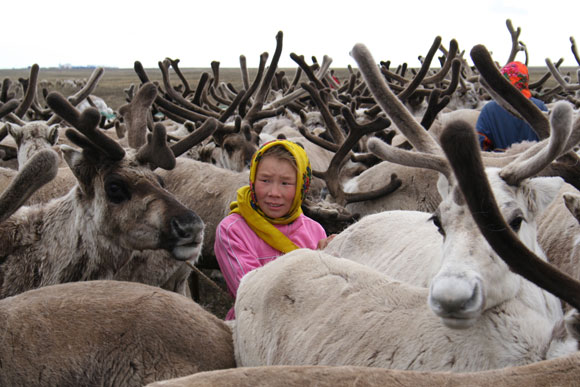 Polar-communities2.jpg